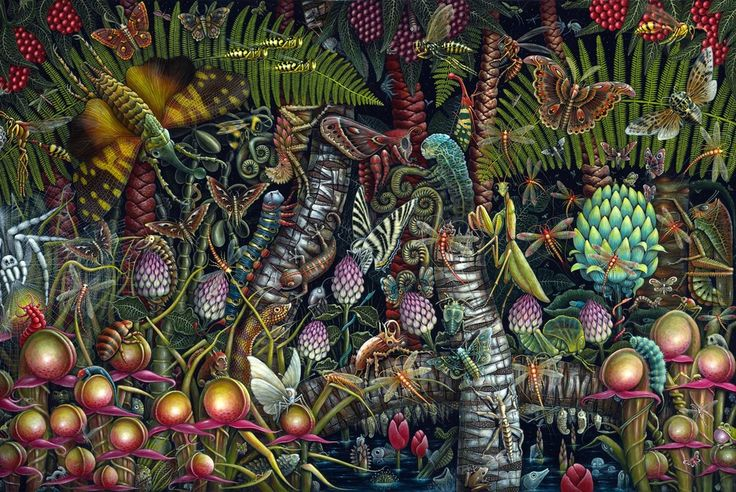 """Image de jardin microcosmique ~ 35 X 23"""" Signed & Edition Limitée Numérotée 50"""