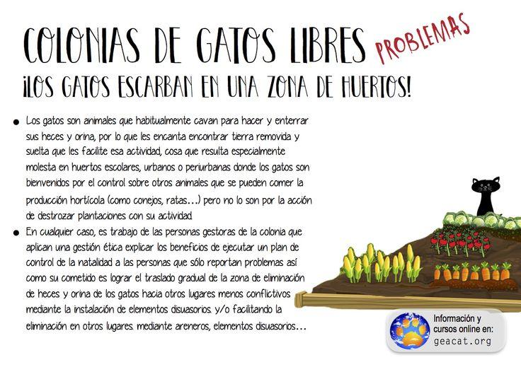 Problema 16: El hábitat y los huertos  #CES  #GestiónÉtica  Curso: https://goo.gl/YXAFJC  Pdf: