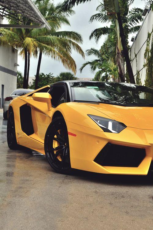 Lamborghini-Super Whips #aventador