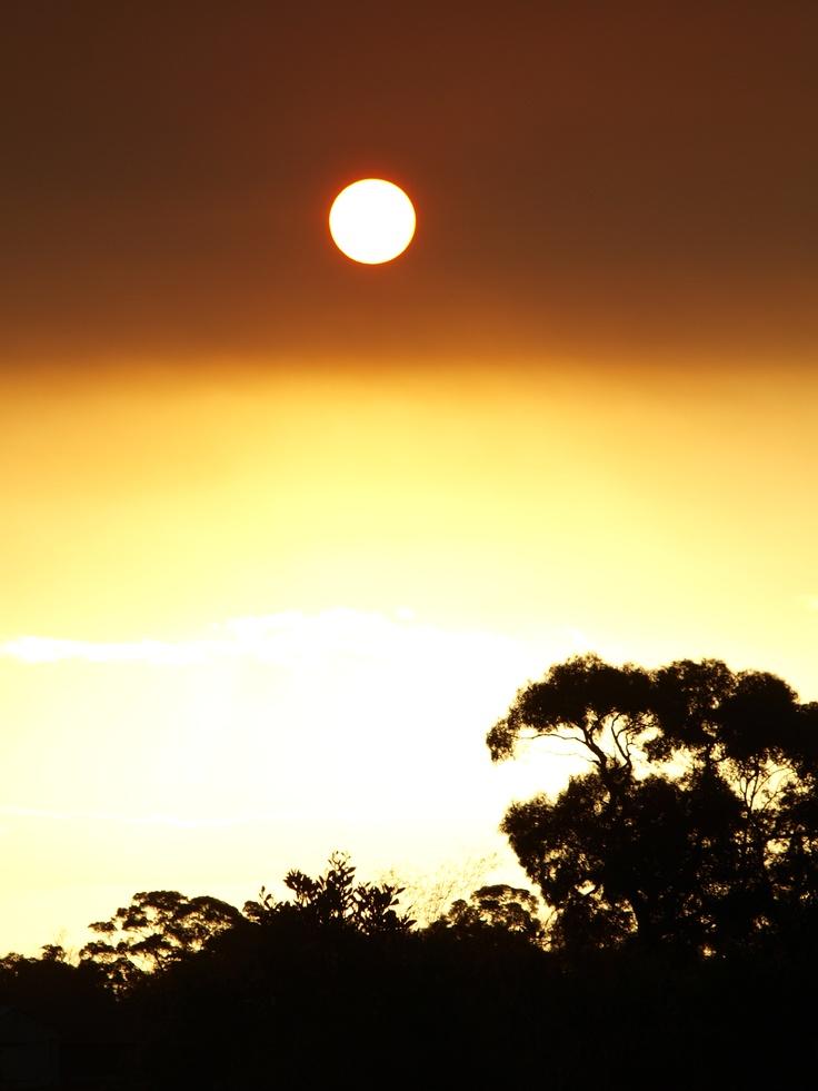 Sun set after a bush fire