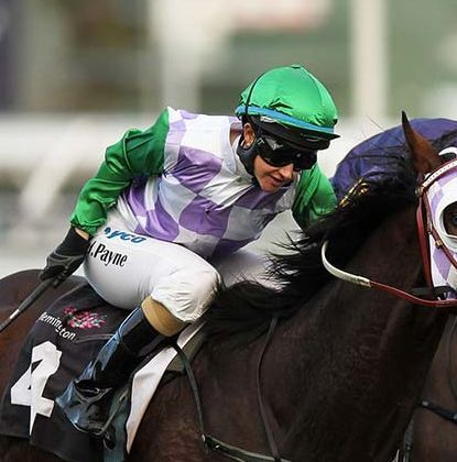 New Zealand-bred Prince of Penzance wins Melbourne Cup | The National Business Review