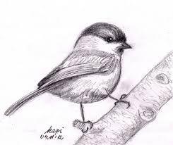 Znalezione obrazy dla zapytania kwiaty szkice ołówkiem
