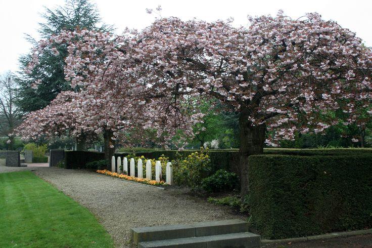 Geheime tuinen van Sittard » Stadspark, met Bergerhof en Ophovenerhof