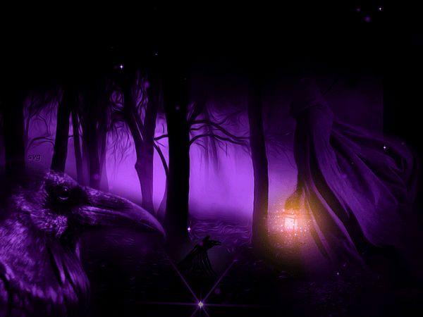 Nella foresta oscura-dark