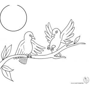 Disegno di Uccelli sull'albero da colorare