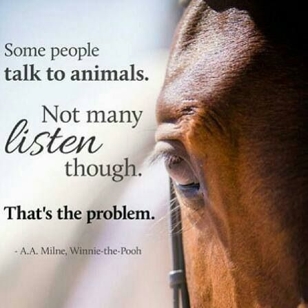 """""""Some people talk to animals. Not many listen though. That's the problem."""" - A.A. Milne, Winnie the Pooh"""