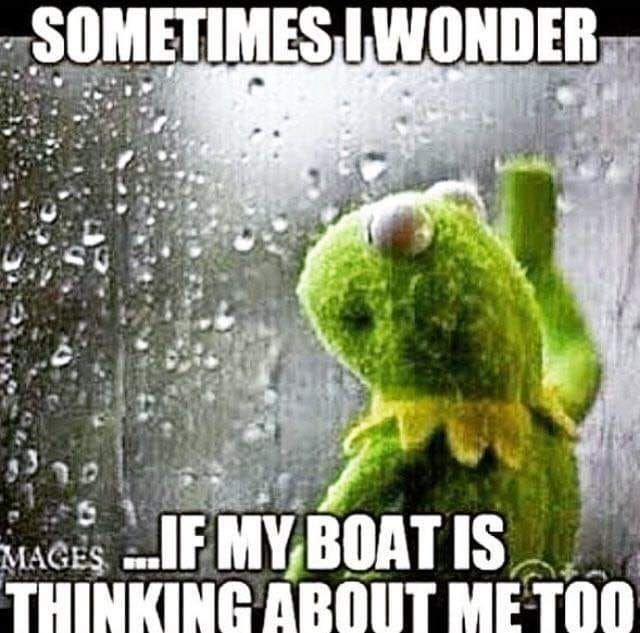 Pin By Jackie Cavey On Funny Sometimes I Wonder Fish Fishing Quotes