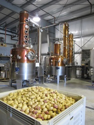 Potatoes and the two Stills inside our Distillery