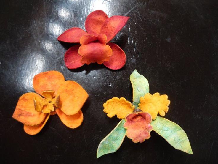 Orquideas Colombianas hechas en piel de naranja