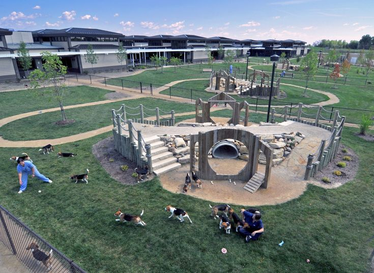 11 Best Images About Play Areas On Pinterest Jfk