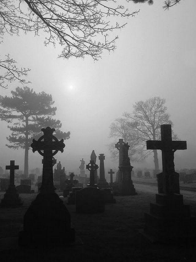 JE SUIS AFFAMEE: MOODBOARD - THE PUMPKIN CLUB