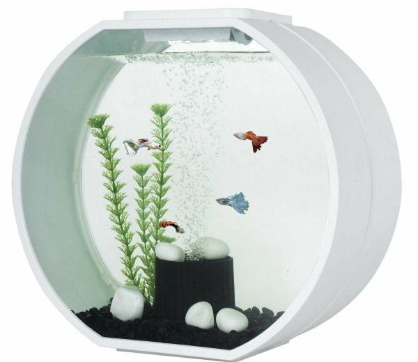 Fish R Fun Deco O 20l Aquarium - White - GardenSite.co.uk
