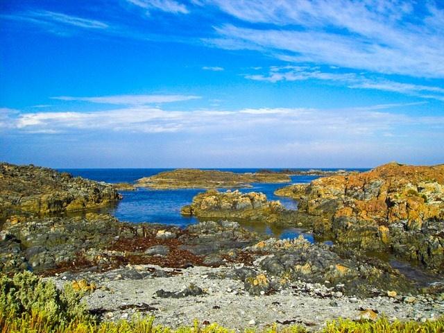 King Island #KingIslandWed