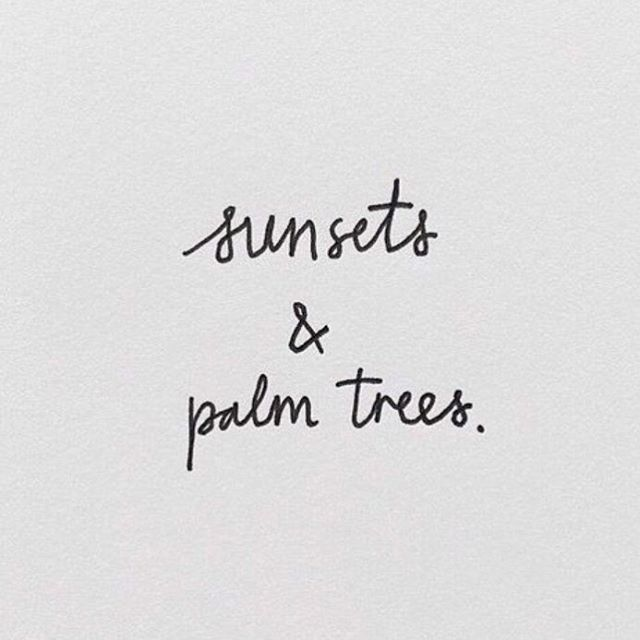 sunsets and palm trees.