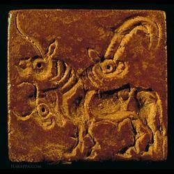 Indus Script: A Study of its Sign Design