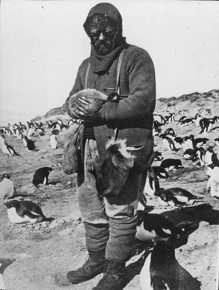Shackleton_nimrod_83.jpg (2496×3294)