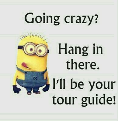 Hold on, I'm on my way!!! | Minions | Pinterest | Hold On