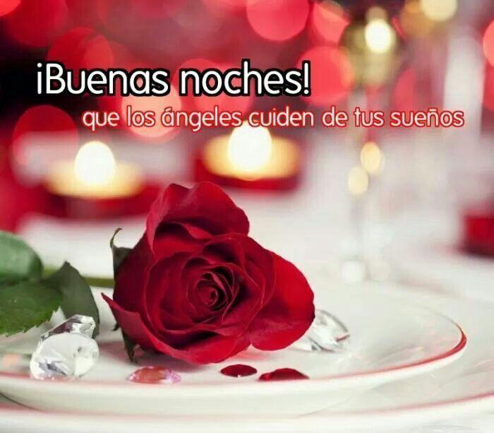 Imagenes De Flores Con Frases Buenas Noches Closet Pinterest