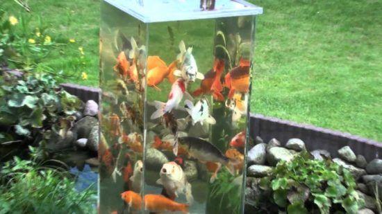 DIY Fish Observation Tower for Ponds