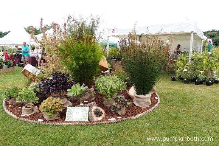 Penberth Plants are from Cornwall, it's wonderful to be able to visit their…