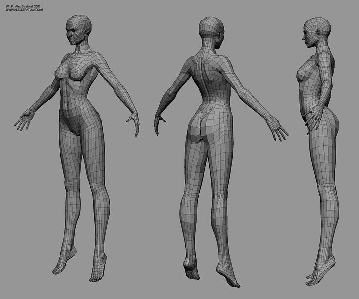 CGTalk - Buttocks topology (female) - and pelvis area