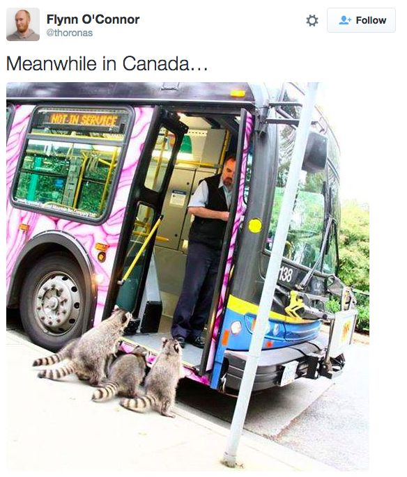 """Transportation: 