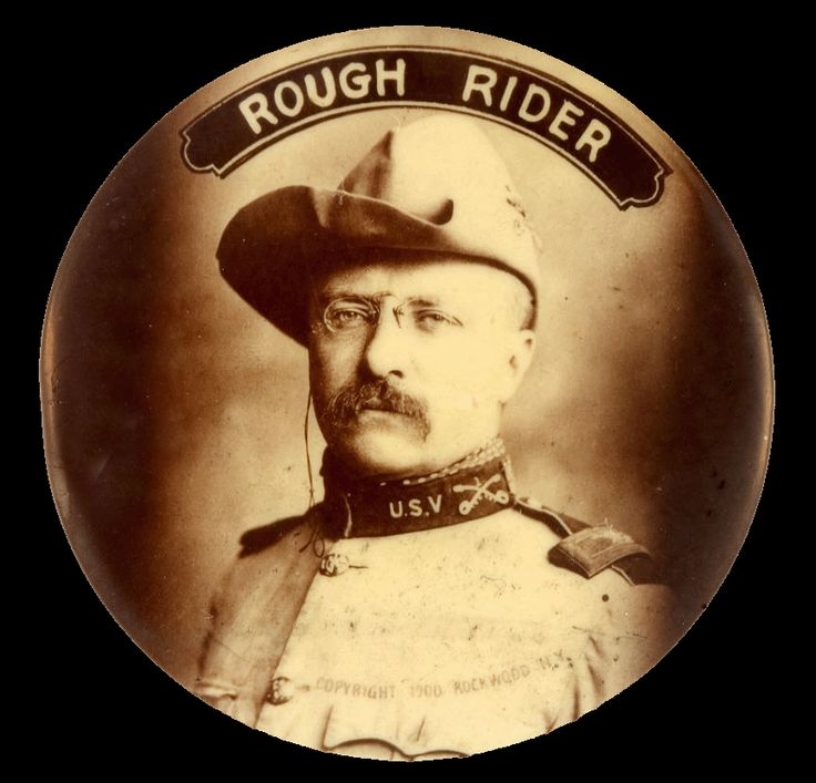 a biography of theodore roosevelt the president A robust new yorker who loved nature, theodore teddy roosevelt ascended to the white house, becoming the 26th us president, and later won the nobel peace prize learn more at biographycom.