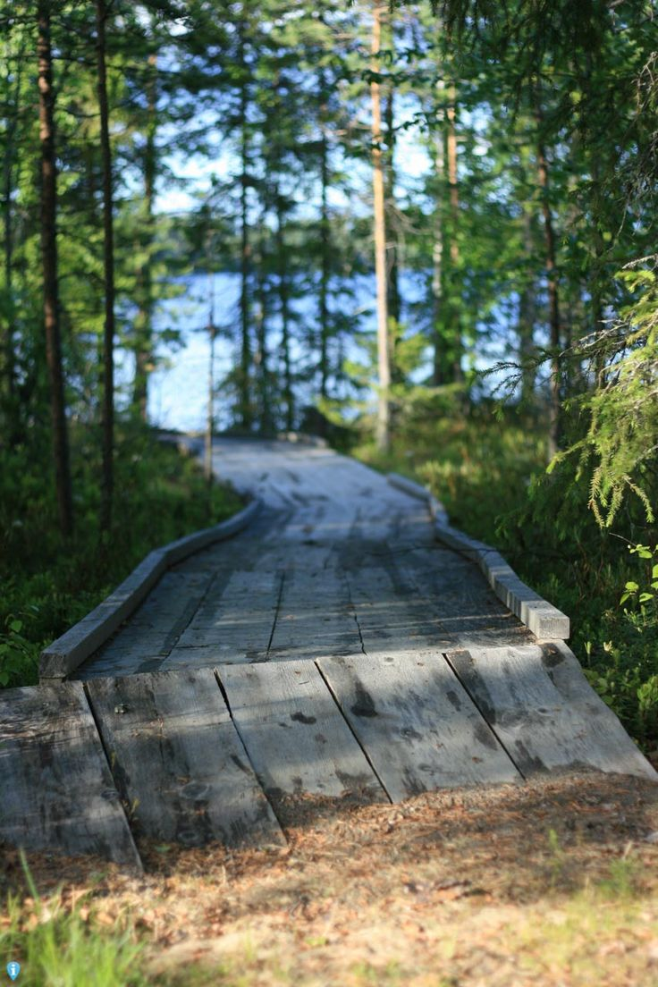Het pad naar het meer in Rovaniemi