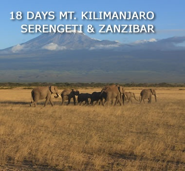my dream of climbing mount kilimanjaro in tanzania 02062015  mount kilimanjaro is the pride of tanzania and  lifelong dream of reaching the roof of africa eli: my name is  climbing mount kilimanjaro.