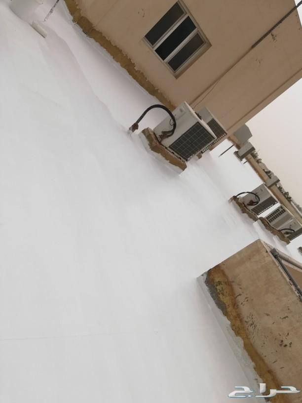 عزل اسطح مطاطي مع الشاش فوق البلاط والسيراميك Birkenstock Birkenstock Milano Hermes Kelly