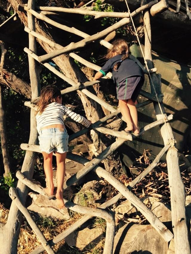 Up to the Tree House