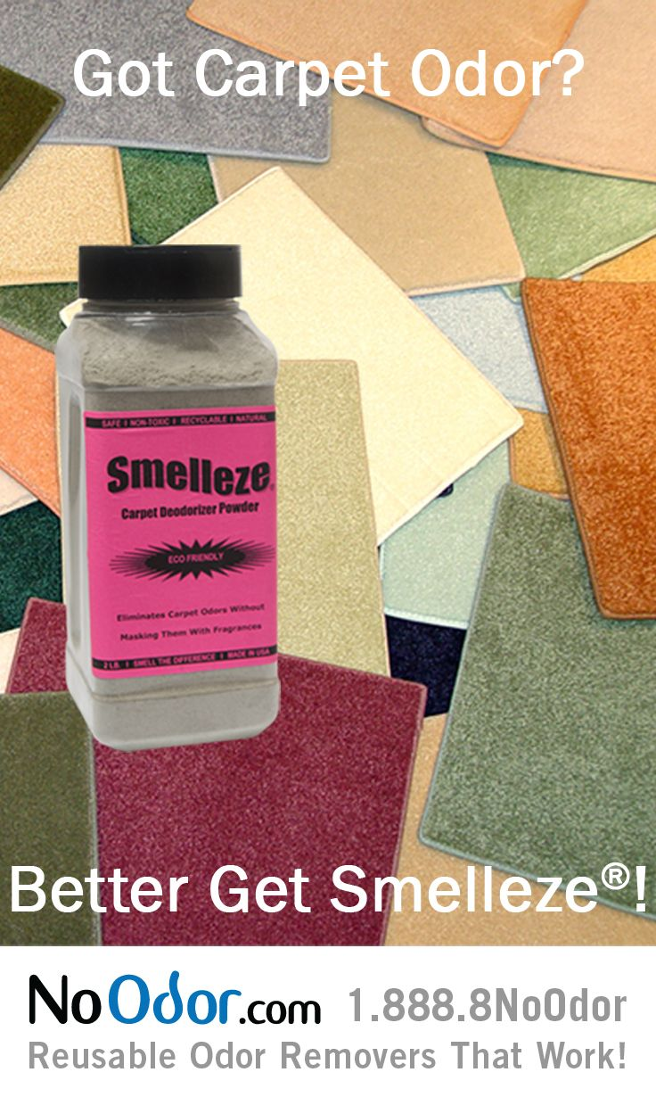 17 Best Ideas About Smelly Carpet On Pinterest Diy