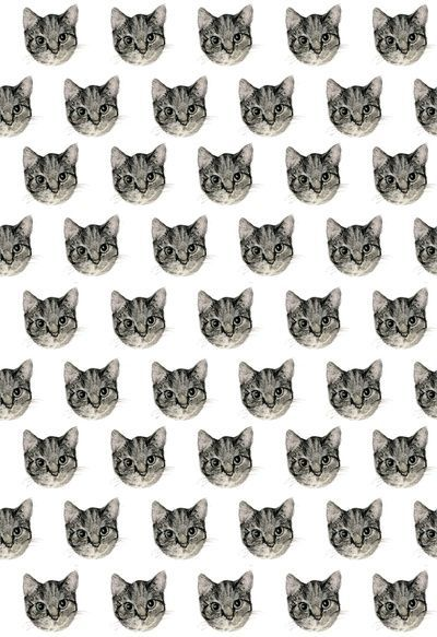 brown black cat face pattern laminate fabric from Japan, Laminates ...