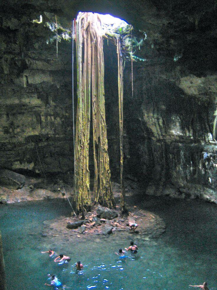 Cenote outside of Playa del Carmen, Mexico