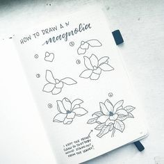 """2,277 Likes, 19 Comments - Liz • Bullet Journal (@bonjournal_) on Instagram: """"Happy #FlowerFriday, my friends. Today I'm showing you how to draw a magnolia flower. I messed up…"""""""