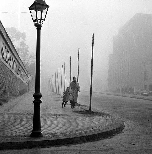 The Shadow of the Wind by Francesc Catalá Roca Spain