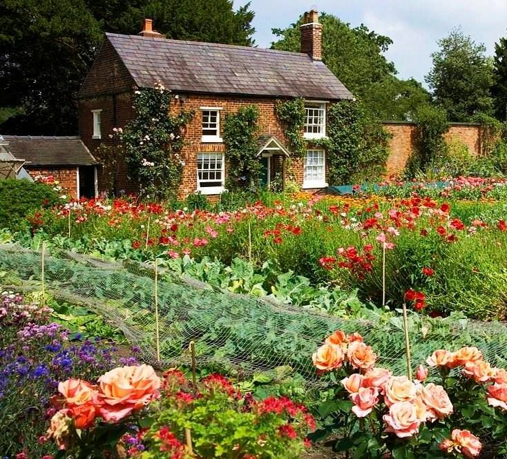Great British Gardens: 17 Best Images About Gardens On Pinterest