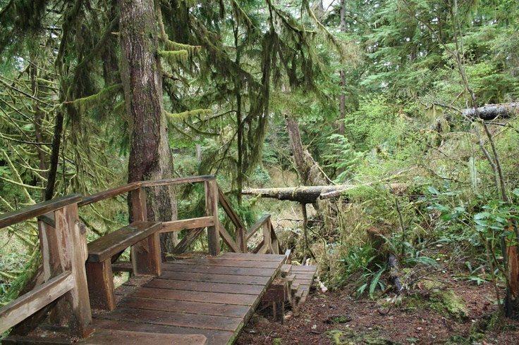 Tofino: Bc Projects, Favorite Places, X Tofino Surf, British Columbia