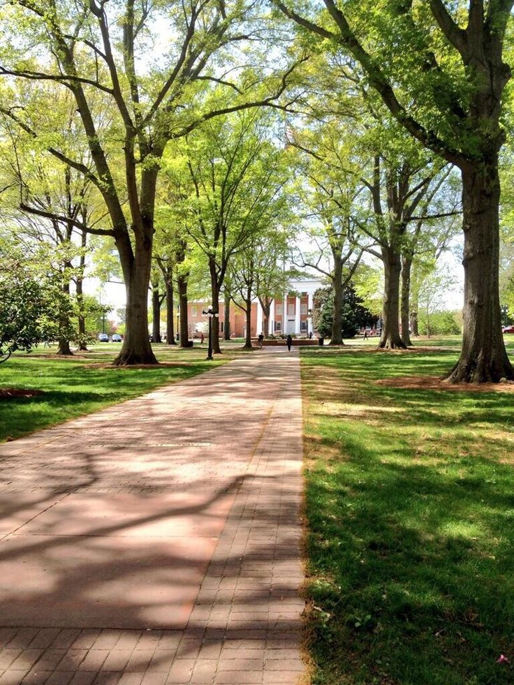 The University of Mississippi so jealous of everyone that goes here