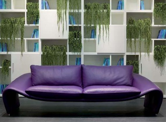 Would love to have a purple leather sofa...