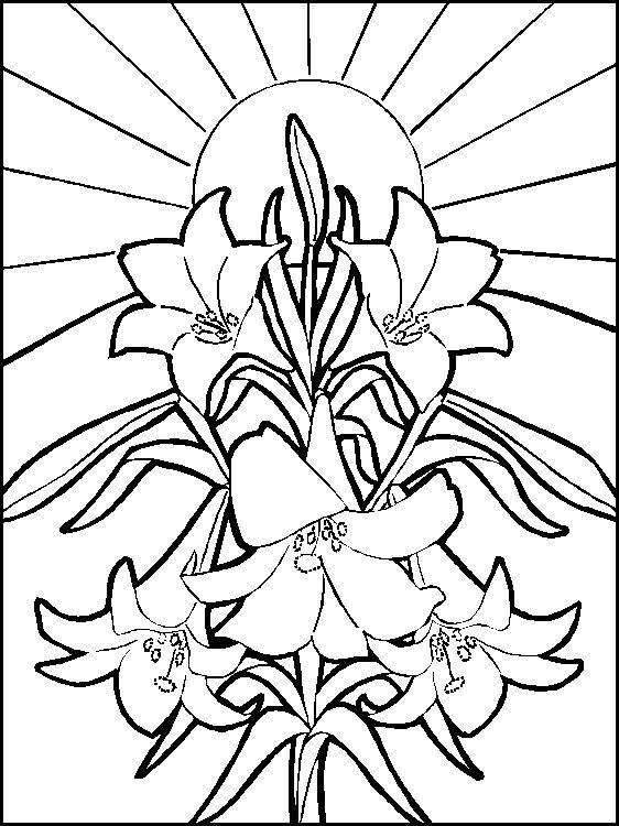 316 best easter crafts baking ideas images on pinterest easter coloring page negle Images