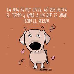 Art By Peromiraqueperros Dedica todas tus energías a lo que te merece la pena!!! www.peromiraqueperros.com #perros #perritos #mascotas #adorable #bonito #regalos #gift #tiendademascotas #perruno #regalomascotas #petlovers #can #canino #peludos #divertido #taza #animales