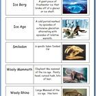 These flashcards are one small part of my Weathering, Soil, Soil Science, and Soil Conservation, Ice-Ages, and Glaciers Unit.  Also included are hu...