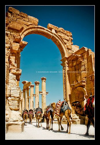 The ancient city of Palmyra, Syria... An oasis in the desert for thousands of years
