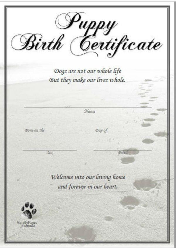 Pdf Psd Ai Indesign Free Premium Templates Birth Certificate Template Dog Birth Birth Certificate