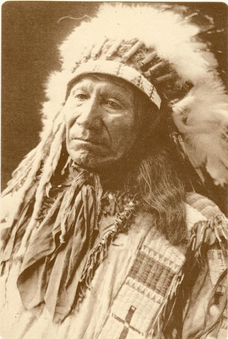"""native americans' struggles """"a native american elder once described his own inner struggles in this manner: inside of me there are two dogs one of the dogs is mean and evil."""