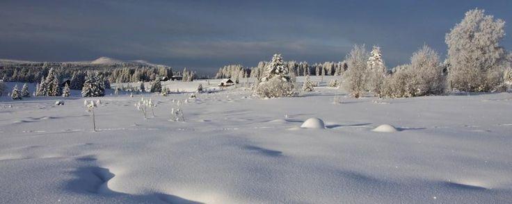 Šumava panoramatická | Vladislav Hošek