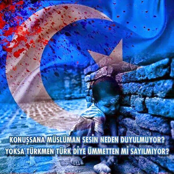 11 Kasım 2014-TÜRK DEĞİLSE MÜSLÜMAN DAMI DEĞİLSEN BEN ÖLÜREM GAVİM GARDAŞ NERDESEN.