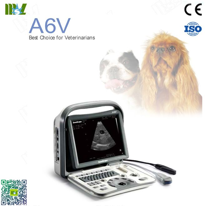 SonoScape A6v veterinary ultrasound : ultrasonido obstetrico