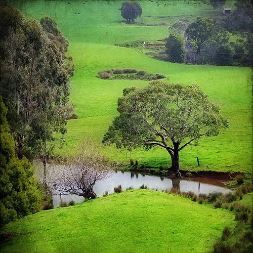 Buy property in Tasmania...Miss Tassie soooo much :(